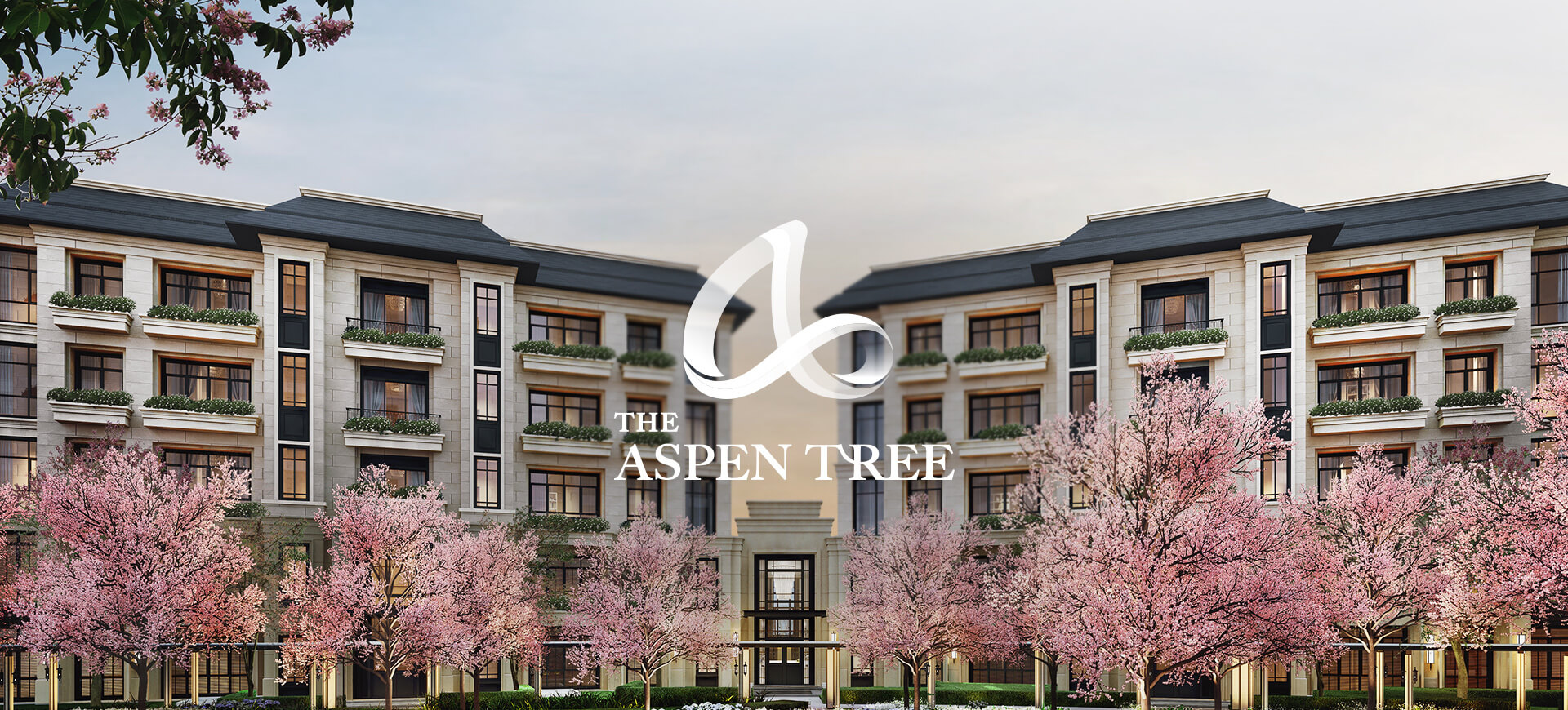 The Aspen Tree hilight desktop