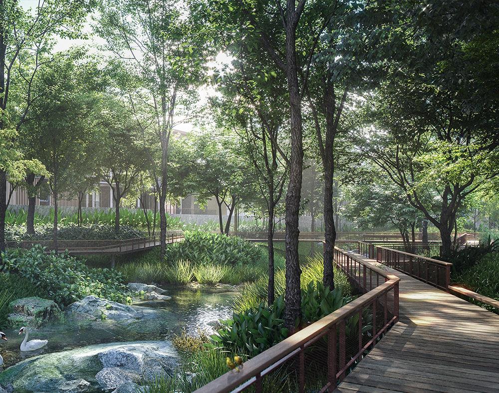 Mulberry Grove Forestias Facilities