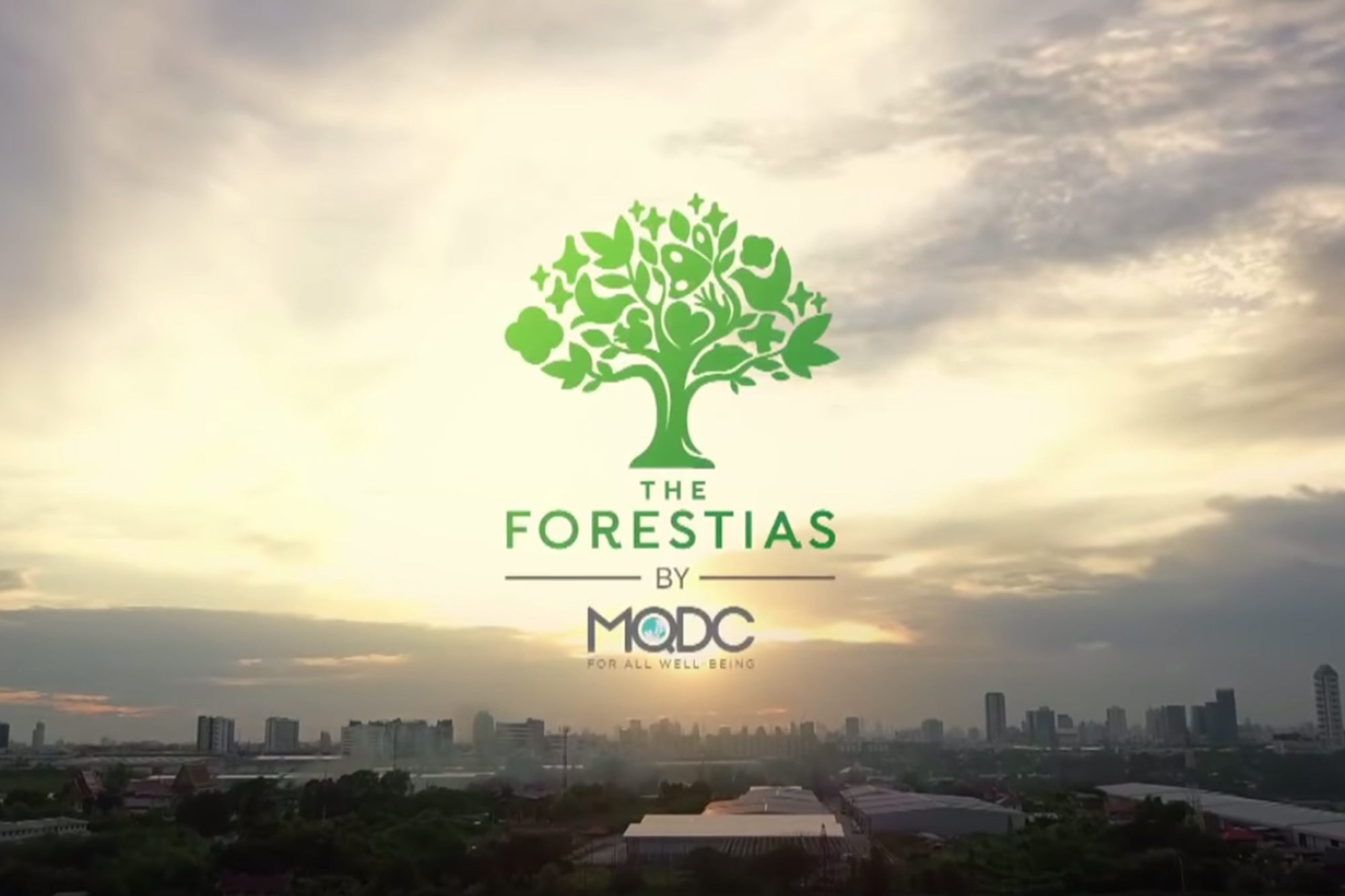 'Forest Rescue' saves city trees